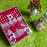 paket kado bayi dress polka merah