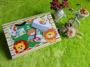 paket kado bayi lion hijau 63 terdiri dari kaos lengan panjang,celana,topi bayi bahan lembut