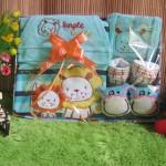 Paket Kado Bayi Baby Gift Singa Biru
