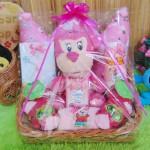 paket kado bayi baby gift kado melahirkan-parcel kado bayi parsel bayi keranjang spesial bantal mahkota ANEKA WARNA