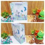 kemasan kado, bungkus kado, tas souvenir, tas kado, paper bag, gift bag hampers butterfly umbrella cantik